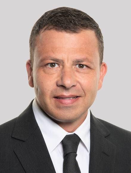 Domenico Martinelli